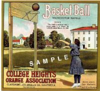 Ampliar Foto: College Heights Orange & Lemon Association (1910)